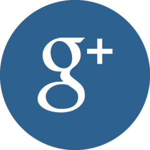 Galvin Flying's Google+ Button